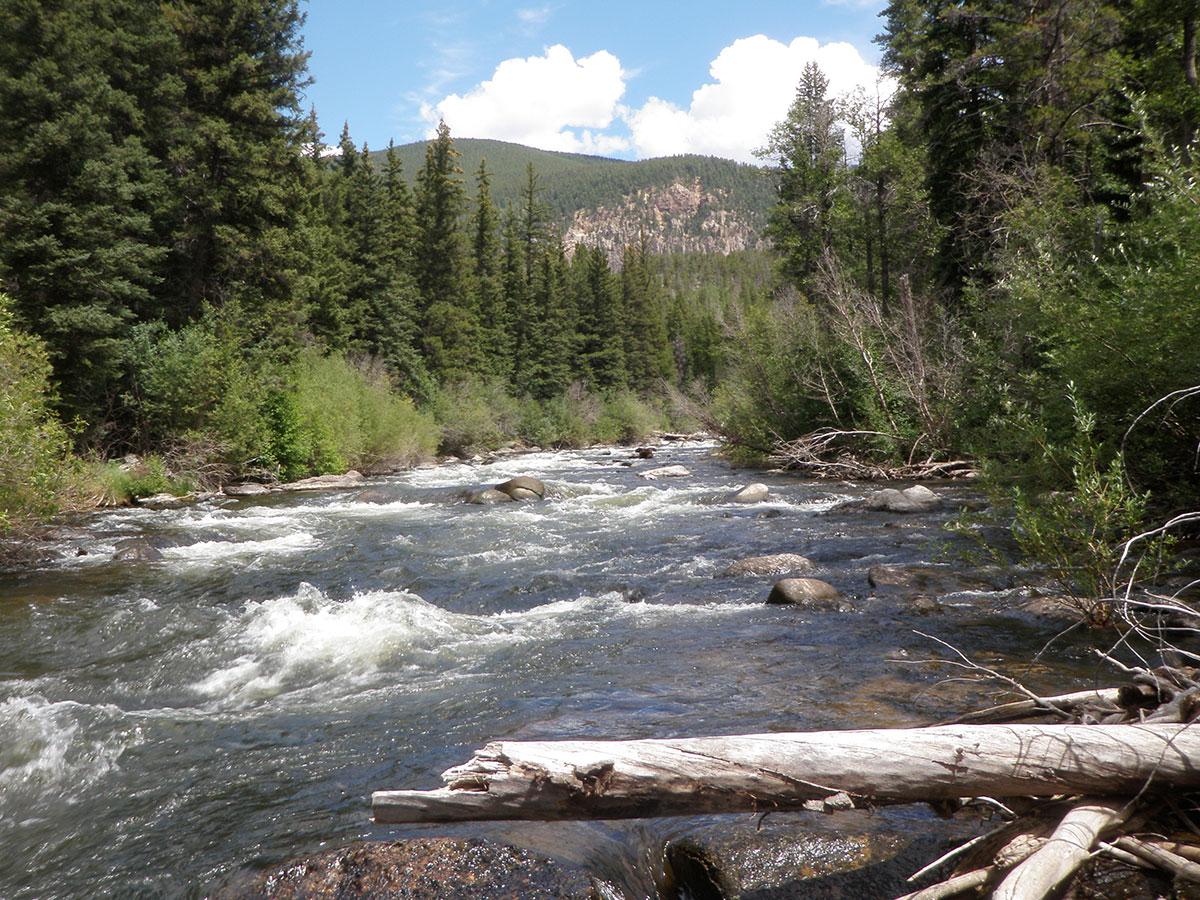 taylor-river-rapids