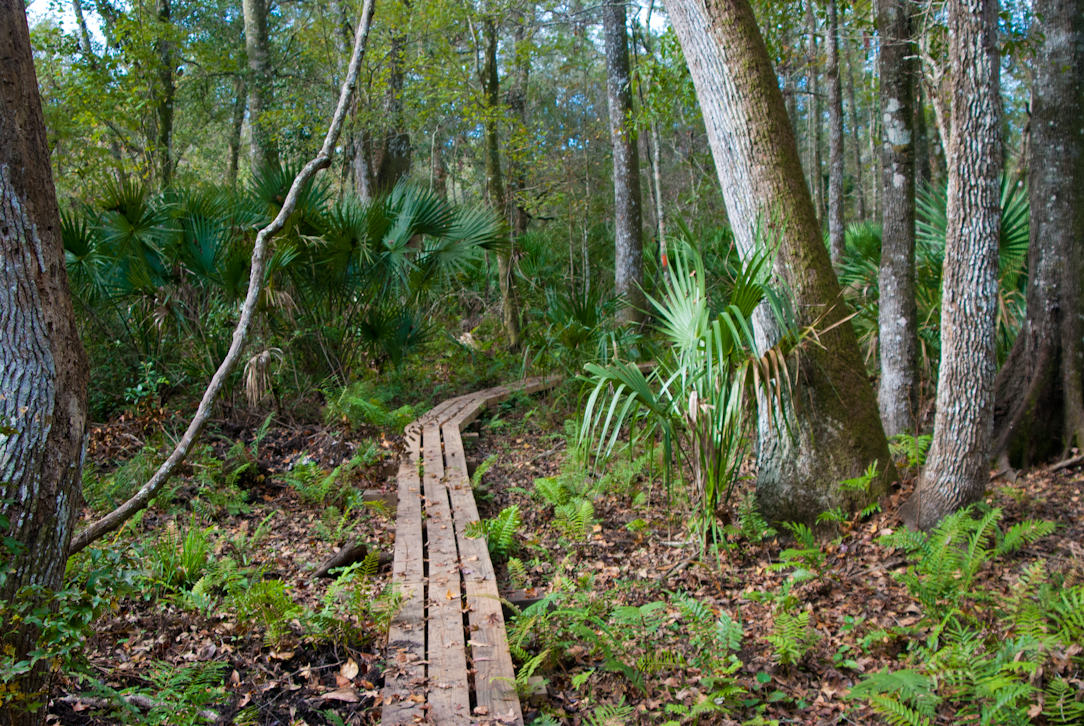 florida-national-scenictrail-3