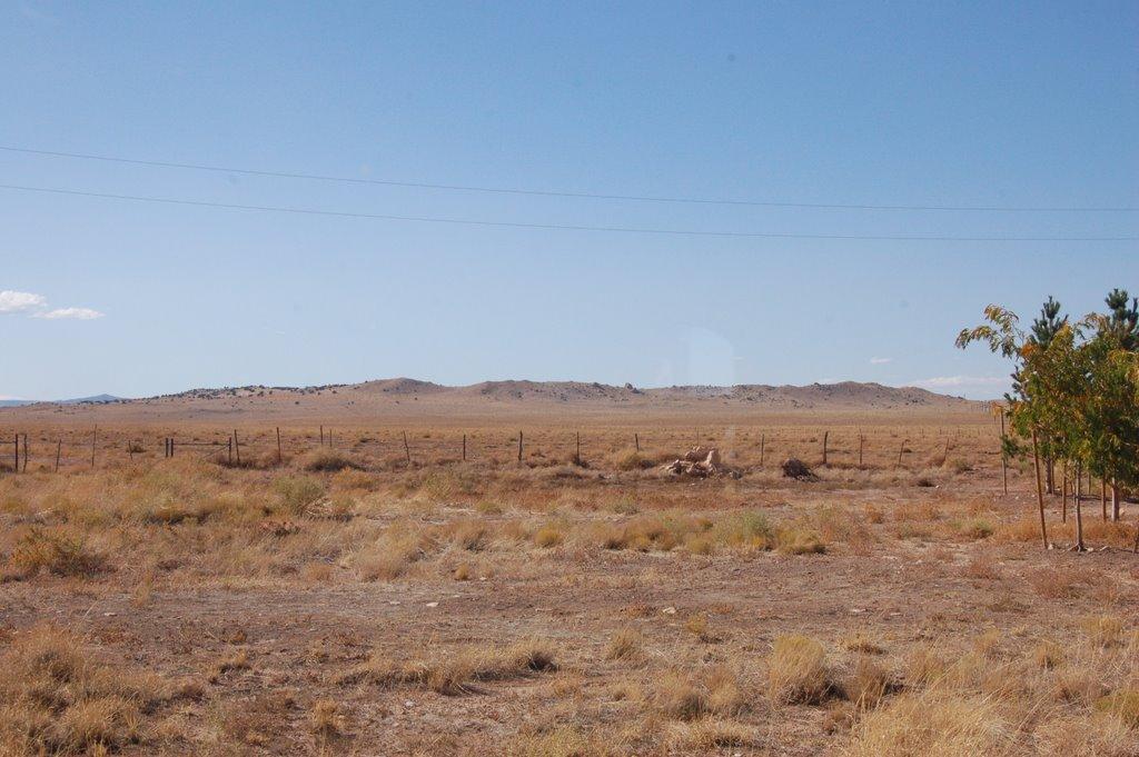 bartbar-ranch-2